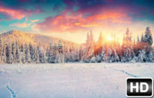 Winter & Snow HD Wallpapers New Tab