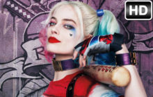 Harley Quinn Wallpapers HD New Tab Themes