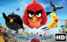 Angry Birds Wallpapers HD New Tab Themes