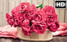 Roses Wallpaper HD New Tab – Rose Themes