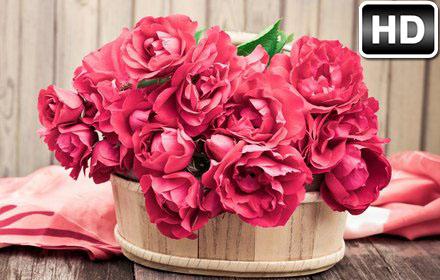 Roses Wallpaper Hd New Tab Rose Themes Free Addons