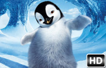 Penguin Wallpaper HD Penguins New Tab Themes