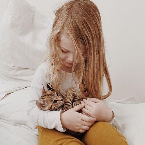 kitten care 5