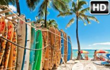 Hawaii Wallpapers HD Beach New Tab Themes