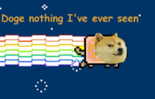 doge and nyan cat 0