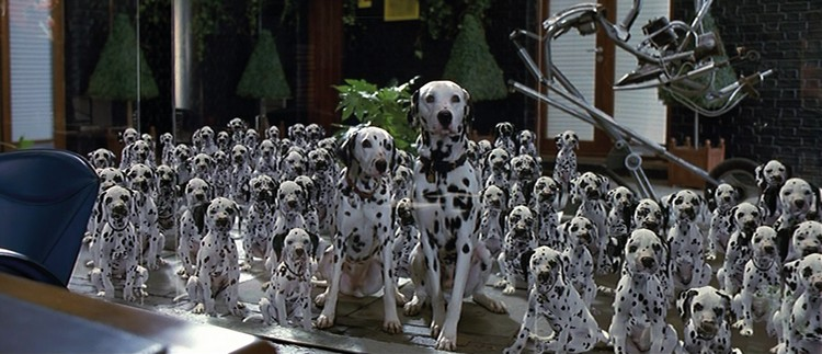 famous dogs in movies 12