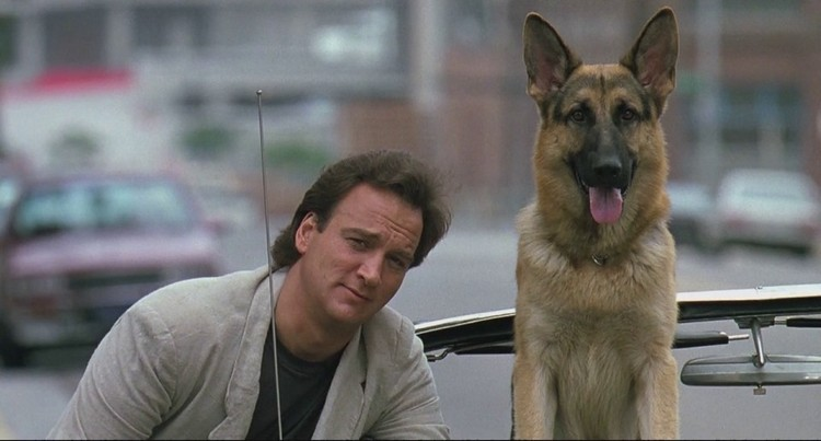 famous dogs in movies 2