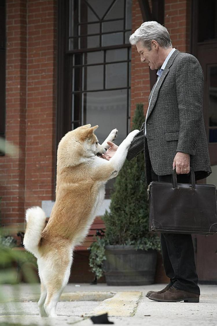 famous dogs in movies 6