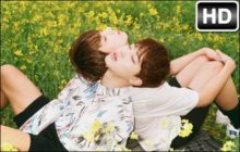 Jimin & Jungkook BTS HD Wallpapers New Tab