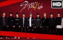 Stray Kids Kpop HD Wallpapers New Tab Themes