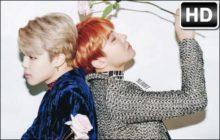 BTS Jimin & J Hope Wallpapers JiHope New Tab